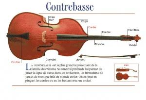 tango-argentin-orleans-stage-musicalite-contrebasse